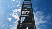 Possum Catcher on Ladder